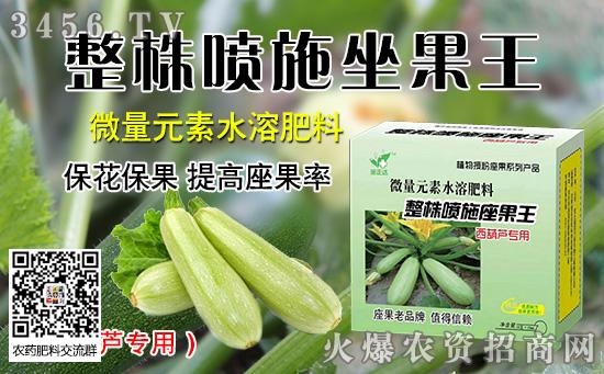 西葫芦需肥规律 西葫芦施肥技术 施肥方法