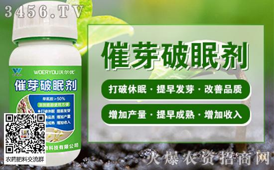 种子催芽的常见方法 常见蔬菜种子如何催芽