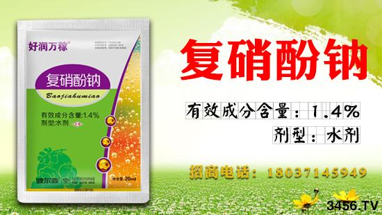 复硝酚钠的作用 使用方法 注意事项